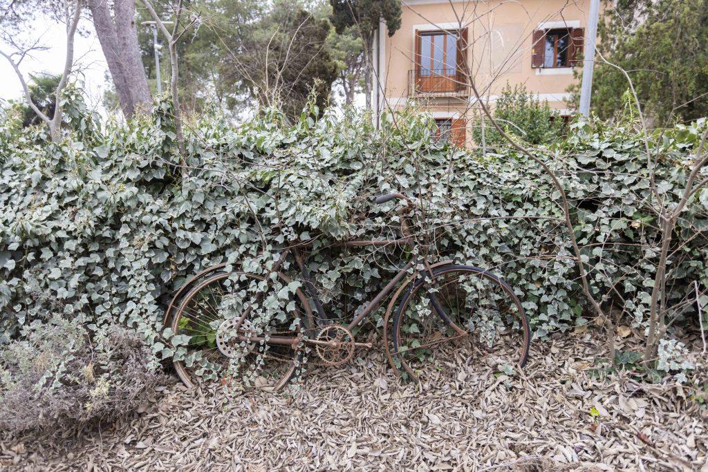 Detalle bicicleta antigua, situada en el amplio jardín exterior de La Nova Alcudia.