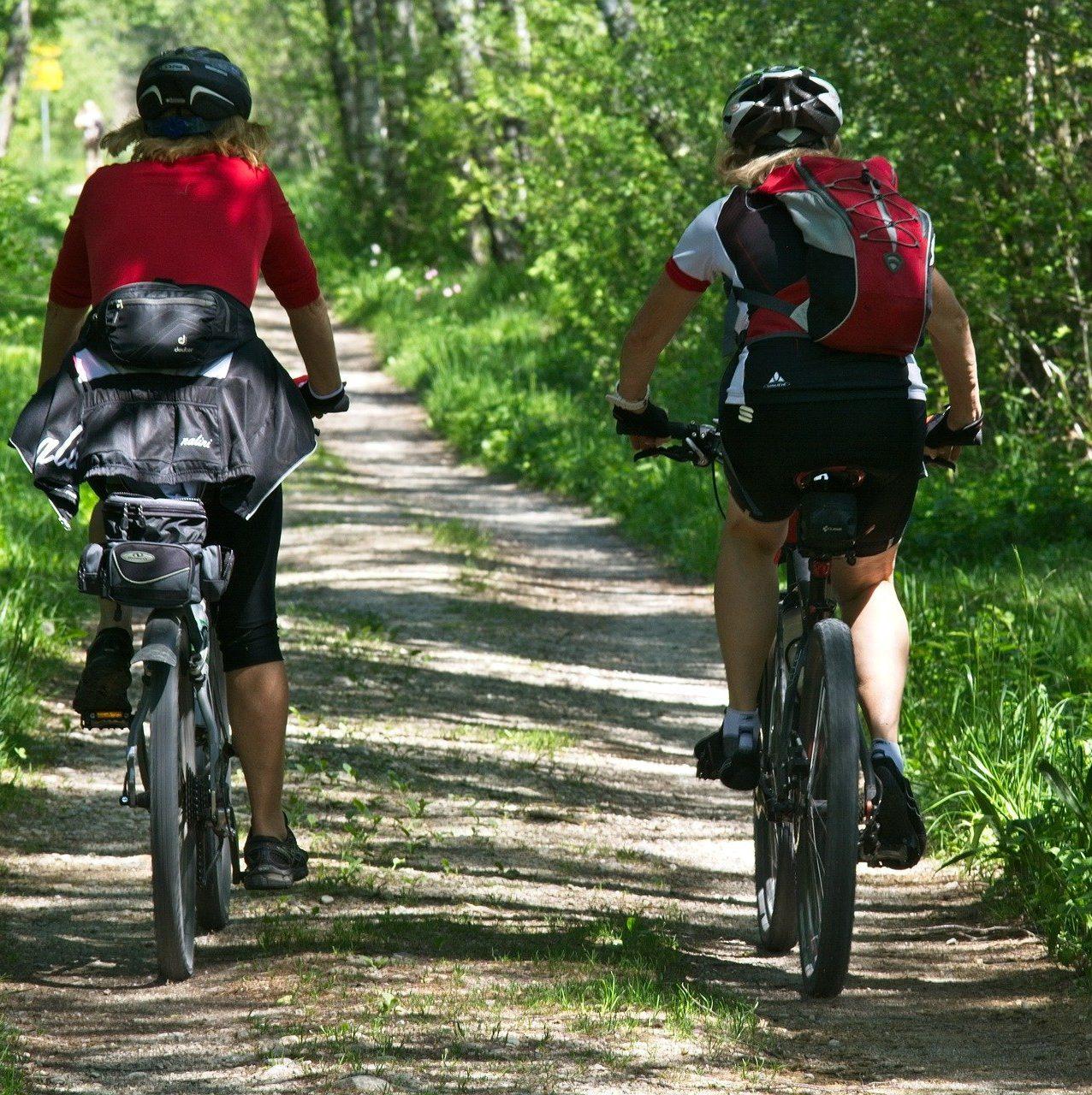 Ruta de bicicleta en Fontanars dels Alforins.