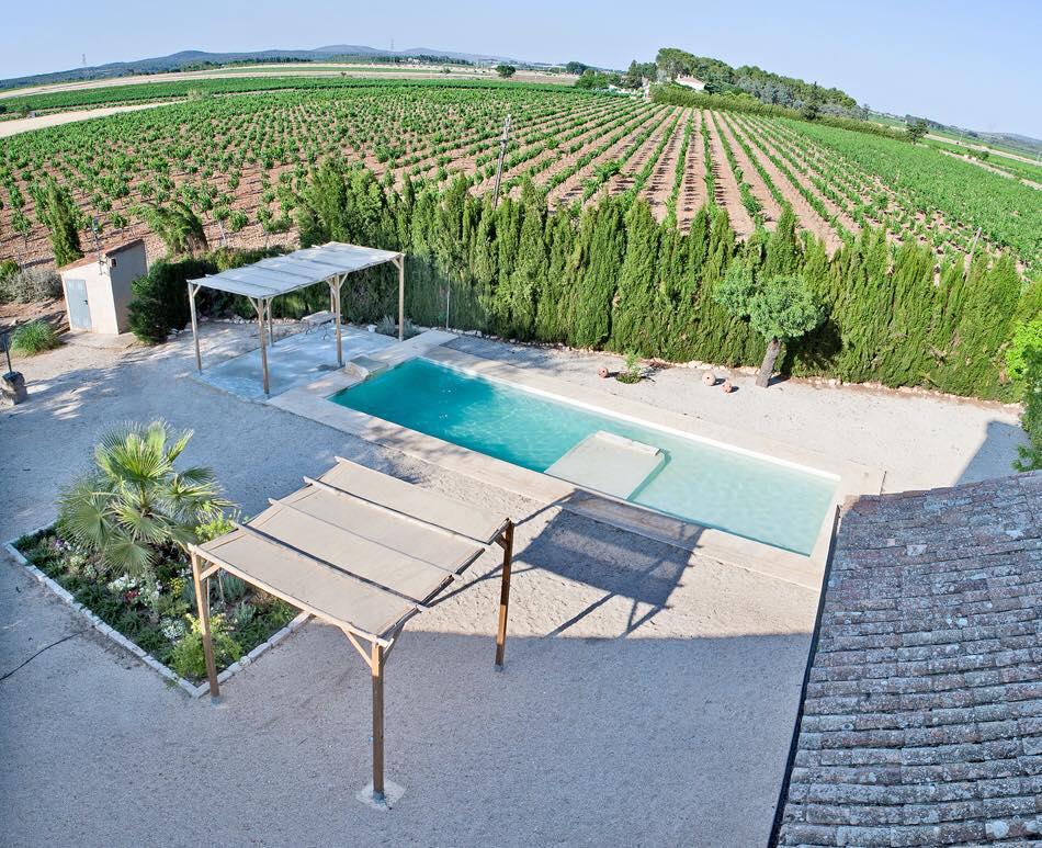 Fotografía aérea del entrono que rodea a la masía rural La Nova Alcudia. Fotografía que muestra los viñedos que rodean la mansión y la piscina de la misma.
