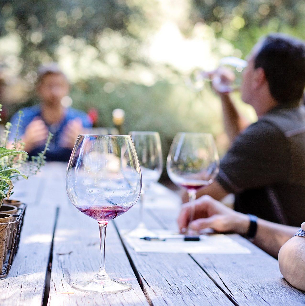 Cata de vinos en Fontanars dels Alforins.